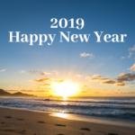 新年あけましておめでとうございます! - Happy New Year 2019!